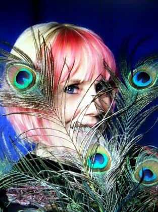 Peacock Kat for katkerr.com